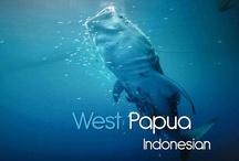 Asien - Indonesien / Die Republik Indonesien ist der größte Inselstaat sowie nach der Einwohnerzahl der viertgrößte Staat der Welt, und grenzt auf der Insel Borneo an Malaysia, auf der Insel Neuguinea an Papua-Neuguinea und auf der Insel Timor an Osttimor... http://de.wikipedia.org/wiki/Indonesien