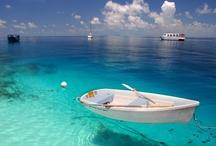 Asien - Malediven / Die Malediven sind ein Inselstaat im Indischen Ozean nahe der Südspitze Indiens und bestehen aus mehreren Atollen und 1.196 Inseln, von denen 220 von Einheimischen bewohnt und 87 weitere für touristische Zwecke genutzt werden... http://de.wikipedia.org/wiki/Malediven
