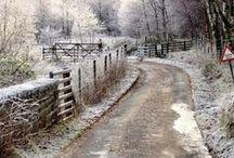 Winter Beauty / by Miroslawa Pustelnik