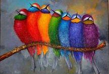 Colours / by Miroslawa Pustelnik