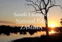 Afrika - Sambia / Sambia — vormals Nordrhodesien — ist ein Binnenstaat im südlichen Afrika. Er grenzt an Angola, die Demokratische Republik Kongo, Tansania, Malawi, Mosambik, Simbabwe, Botswana und Namibia. Der Name leitet sich vom Fluss Sambesi ab... Quelle: http://de.wikipedia.org/wiki/Sambia