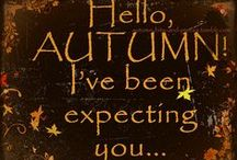 Autumn / by Miroslawa Pustelnik
