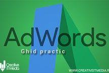 Promovare Google Adwords / Campanii de promovare Google Adwords, studii de caz, cele mai bune tactici si strategii Adwors PPC