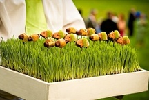 Wedding Food ideas / Beautiful, creative, delicious, clever food to serve at wedding receptions!
