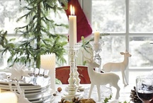 Christmas on Owen Ridge / Themes and components in consideration. / by glenda Bailey