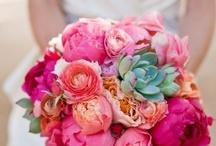 Wedding Flower Ideas / by Michele O'Malley