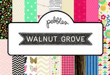 Walnut Grove Collection / Walnut Grove collection, released by Pebbles, Inc. summer 2013 #paper #scrapbooking #papercrafts #cardmaking  / by Pebbles Inc.