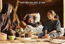 film FR / by Elodie Chosson