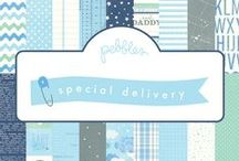 Special Delivery Collection / Special Deliver collection released by @PebblesInc winter 2014. #babyideas #crafts #scrapbooking / by Pebbles Inc.