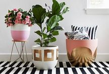 Green | Plants In The Home / Inspiring ways to add some greenery into your life!