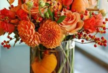 Halloween and Fall Festivities! / Fun Fall decor and Halloween Ideas! / by Amber Lia