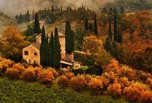 Provence, Tuscany, etc...