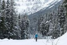 Winter Travel / Tips and guides to fun winter destinations and activities.