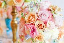 Flower combinations / The many combinations available and mixing different types of flowers, to create a work of art.