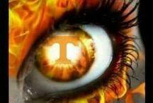 Tennessee Vols Football / by Orlinda Levi
