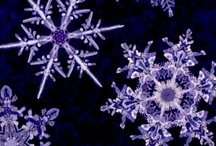 Snowflakes / by jbm quilts