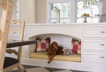 Cabinetry for Pets!
