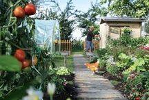 Passione orto! / Progetti e ispirazioni per realizzare il tuo orto in giardino, sul terrazzo o sul balcone.