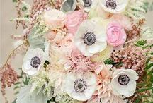 Bouquets / by Terese Cook