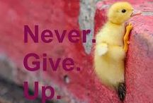 """Never Give Up / Confidence Beads has added some bling! """"Don't quit. Never give up trying to build the world you can see, even if others can't see it. Listen to your drum and your drum only. It's the one that makes the sweetest sound."""" - Simon Sinek  Get yours at www.confidencebeads.com"""