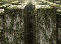 aes; the maze runner [book]