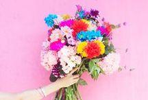 home | floral arrangements / Beautiful flowers and floral arrangements, DIY bouquets.