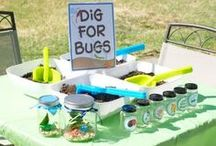 Bug Party Ideas / Cute ideas for decorating, crafts, and treats for a bug themed party! / by Michelle Wise @ That Party Chick