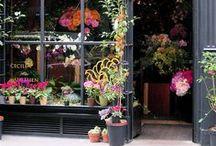 Beautiful Storefronts