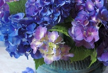 BLUE  INDIGO and VIOLET / Blue is a beautiful color....so soothing