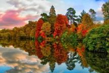 Høst ~ Fall ~ Autumn