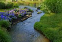 OUTSIDE- Creek/Water Features / Landscaping using water and around water