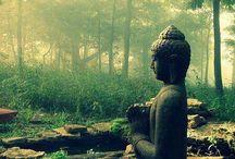 Buddhism | Buddha | Spirituality