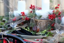 Holiday Magic / decorating and inspiration and ideas for holiday fun! / by Vintage Suzie ღ
