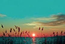 Sunrise Sunset.