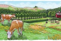 Farm ~ Misc. Ideas / All kinds of great ideas for around the farm. This board is for general info which can be used for many animals. See my other Farm boards for animal-specific info.