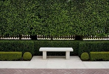 Outdoor Spaces / by Anne Mellenthin