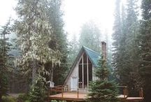 Cabin life / the woods + lakes + my love of a-frames / by Carly McCray