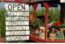 Garden ~ Farm Stand