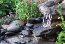 Garden ~ Water Features & Swimming Pools