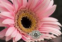 Pink Wedding / Creating a pink themed wedding and need a little pinspiration? This board is for you! Brilliance.com is one of the leading retailers of diamonds, engagement rings, wedding rings, and fine jewelry.