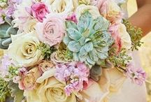 Pastel Wedding / Creating a pastel themed wedding and need a little pinspiration? This board is for you! Brilliance.com is one of the leading retailers of diamonds, engagement rings, wedding rings, and fine jewelry.