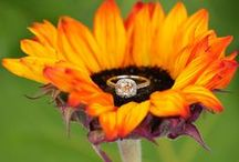 Orange Wedding / Creating an orange themed wedding and need a little pinspiration? This board is for you! Brilliance.com is one of the leading retailers of diamonds, engagement rings, wedding rings, and fine jewelry.