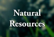 Department of Natural Resources / The Department of Natural Resources leads Maryland in securing a sustainable future for our environment, society, and economy by preserving, protecting, restoring, and enhancing the State's natural resources.