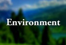 Department of the Environment / The Maryland Department of the Environment (MDE) aims to protect and restore the environment for the health and well-being of all Marylanders.