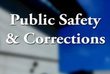 Department of Public Safety & Correctional Services / The Department of Public Safety and Correctional Services protects the public, its employees, and detainees and offenders under its supervision.