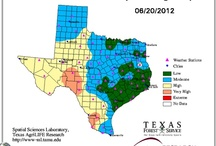 Wildfire Preparedness / Hints and tips for Wildfire Season / by Texas A&M Engineering Extension Service - TEEX