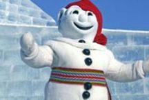 Winter Fun // Plaisirs d'hiver  / by Québec City and Area // Québec Ville et Région