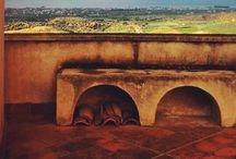 Francesco Cianciotta | Milano Sunrise / Francesco Cianciotta, Milano Sunrise, Charity event a cura di Glenda Cinquegrana e Paola Miraglia, dal 20 al 22.12.2013. Orario continuato dalle 11.00 alle 19.00.
