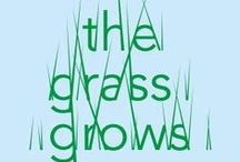 THE GRASS GROWS | BASEL | JUNE 14-22, 2014