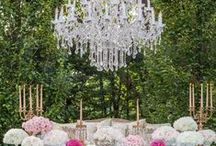 Wedding Decor / All the pretty details including reception tables, centerpieces, flowers, and more.